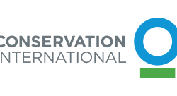 Celebrated partnership for mountain gorillas announces Conservation International as new coalition member