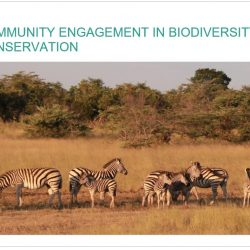 Community_Engagement_in_Biodiversity_Conservation_East_Africa_Report.