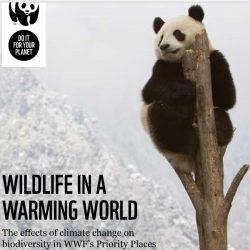 WWF_Wildlife_in_a_Warming_World