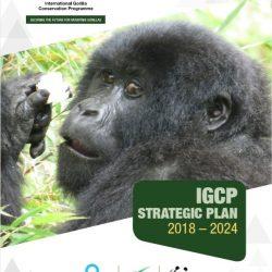 IGCP-Strategic-Plan-2018-2024